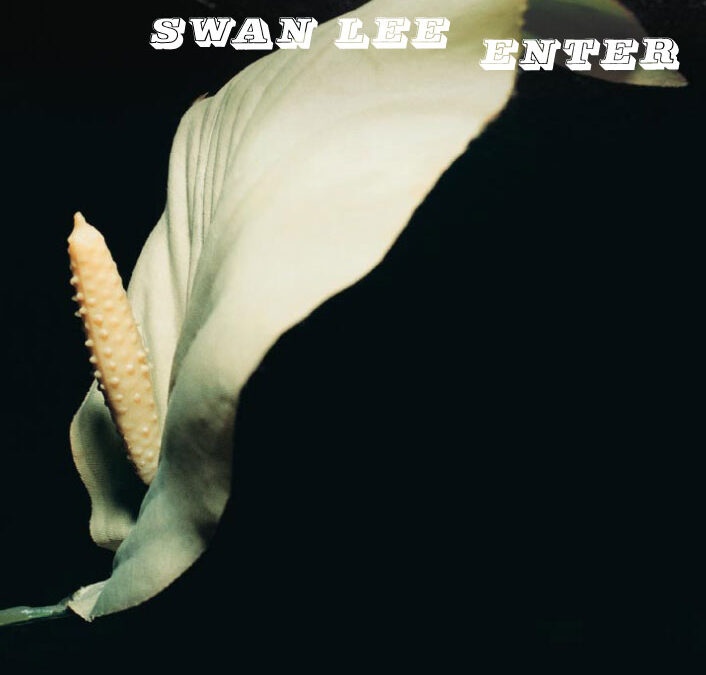 Swan Lee – Enter